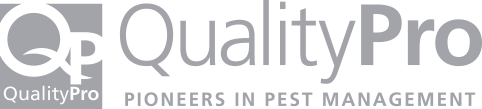 quality pro certification grey icon