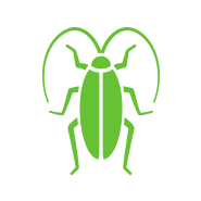 green cockroach on a white background to signify pest control